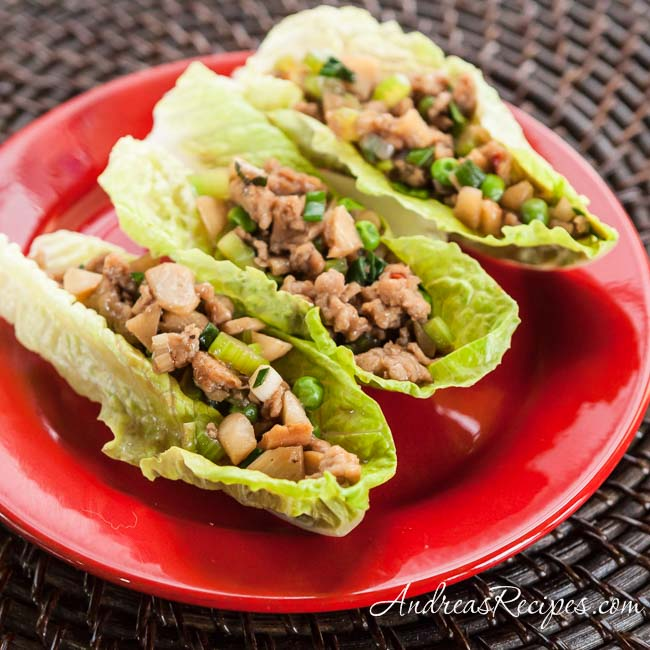 Chinese Chicken Lettuce Wraps - Andrea Meyers