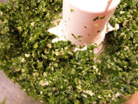 Andrea's Recipes, Parsley Cilantro Marinade and Dipping Sauce