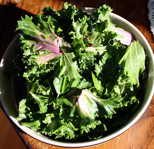 Higher Path Sustainability - Green Garnish Salad