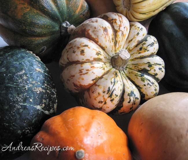 Andrea's Recipes - Squash collection