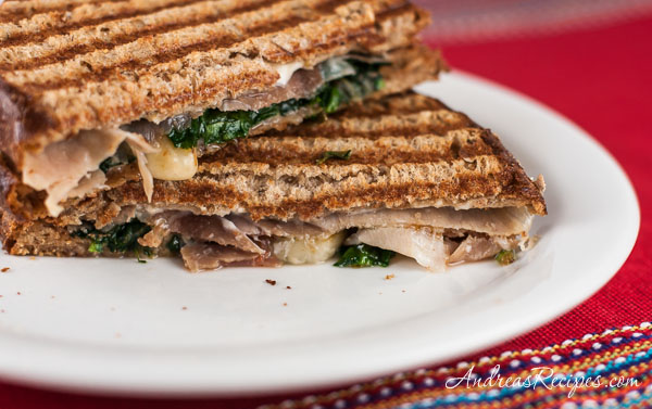 Panini with Prosciutto, Fontina, Spinach, and Slow-Roasted Tomatoes - Andrea Meyers