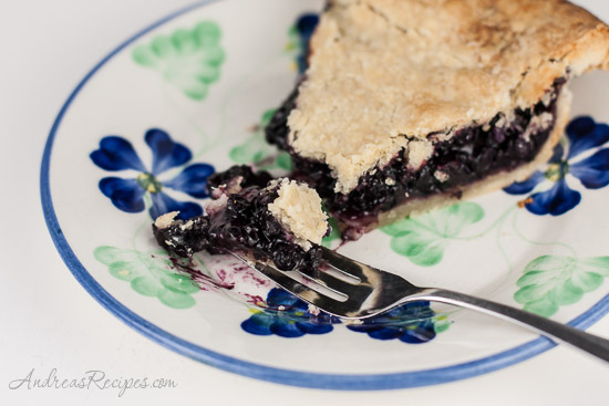 Andrea Meyers - Maine Blueberry Pie