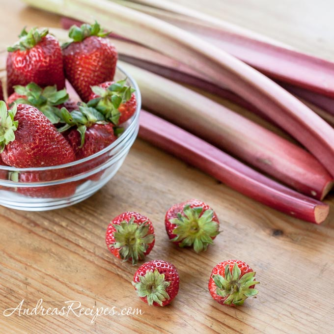 Strawberries and Rhubarb - Andrea Meyers