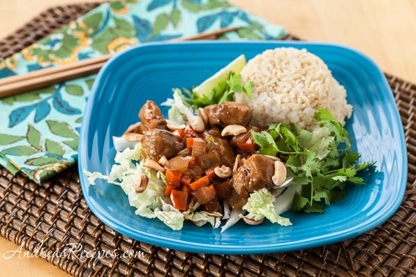 Vietnamese Caramel Pork (The Kids Cook Monday) - Andrea Meyers