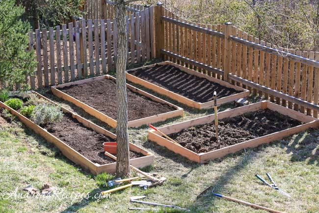 Andrea Meyers - Raised beds