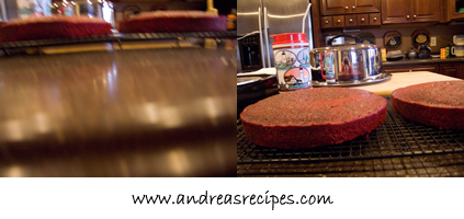 My oldest son's first two photos of the cakes.