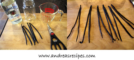 Vanilla extract - gear and ingredients