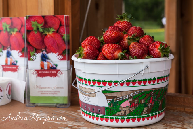 Andrea Meyers - Wegmeyer Farms strawberries