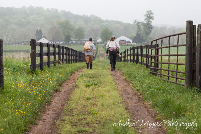Whiffletree Farm, spring morning chores - Andrea Meyers