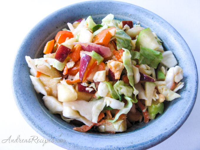 Yogurt Coleslaw with Apples and Peppers - Andrea Meyers