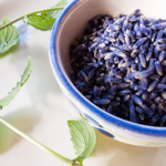 Andrea's Recipes - Lavender Mint Tea