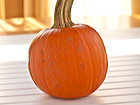Andrea Meyers - How to Roast a Pumpkin and Make Pumpkin Puree