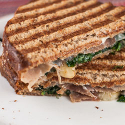 Panini with Prosciutto, Fontina, Spinach and Slow-Roasted Tomatoes - Andrea Meyers