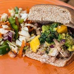 Andrea Meyers - Grilled Chicken Sliders with Mango Avocado Salsa and Mexican Slaw