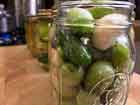Andrea Meyers - Pickled Green Tomatoes