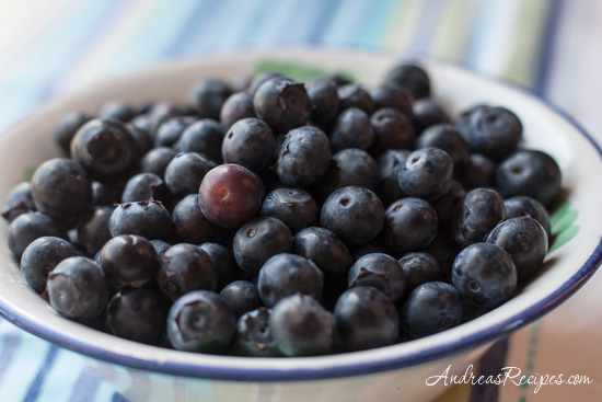 Andrea's Recipes - bowl of blueberries