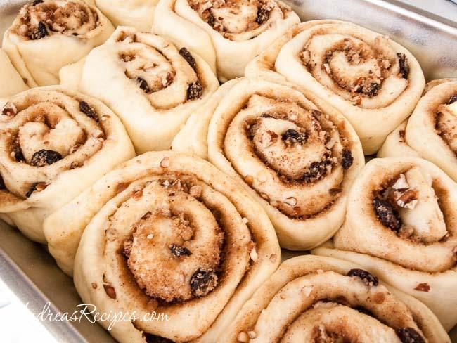 Cinnamon Rolls, risen - Andrea Meyers
