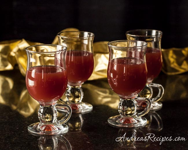 Hot Cranberry Apple Cider - Andrea Meyers