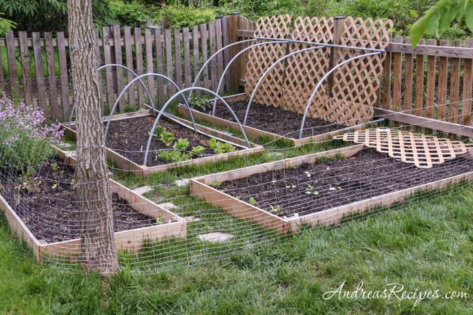 Rabbit fence in our garden - Andrea Meyers