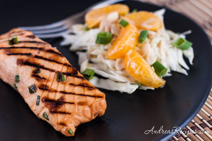 Miso Grilled Salmon - Andrea Meyers