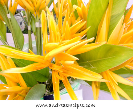 Bird of Paradise (Yellow Parrot) flowers at the KCC Farmers' Market