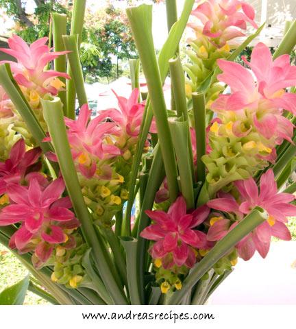 Flowers at the KCC Farmers' Market, Hawaii
