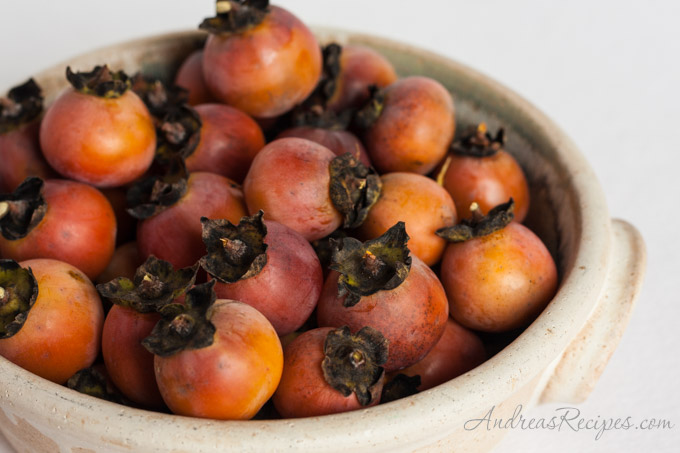 Andrea Meyers - American persimmons (aka Eastern persimmons and common persimmons)