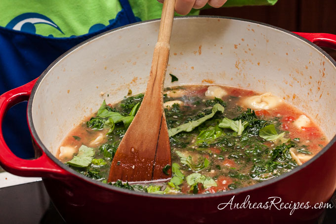 Andrea Meyers - Spinach and Tortellini Soup, stir and serve.