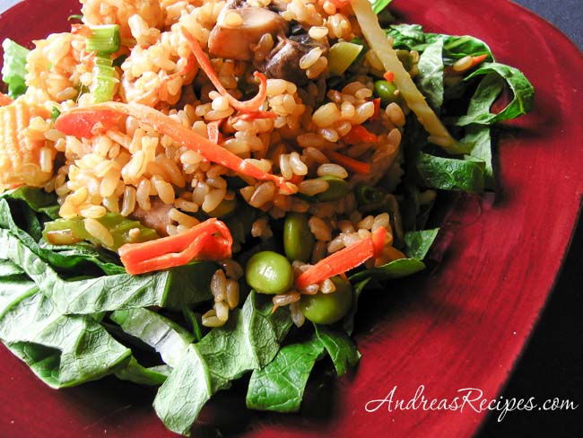 Vegetable Fried Rice - Andrea Meyers