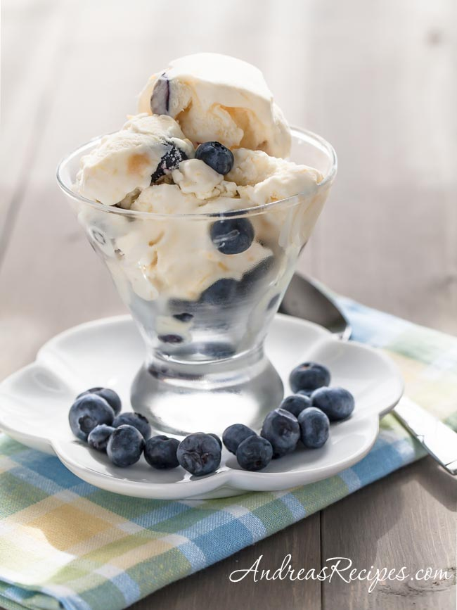 Andrea Meyers - Mango Blueberry Greek Frozen Yogurt
