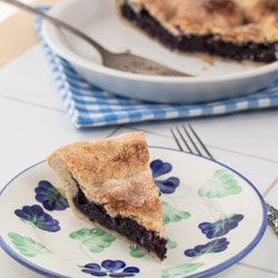 Maine Blueberry Pie - Andrea Meyers