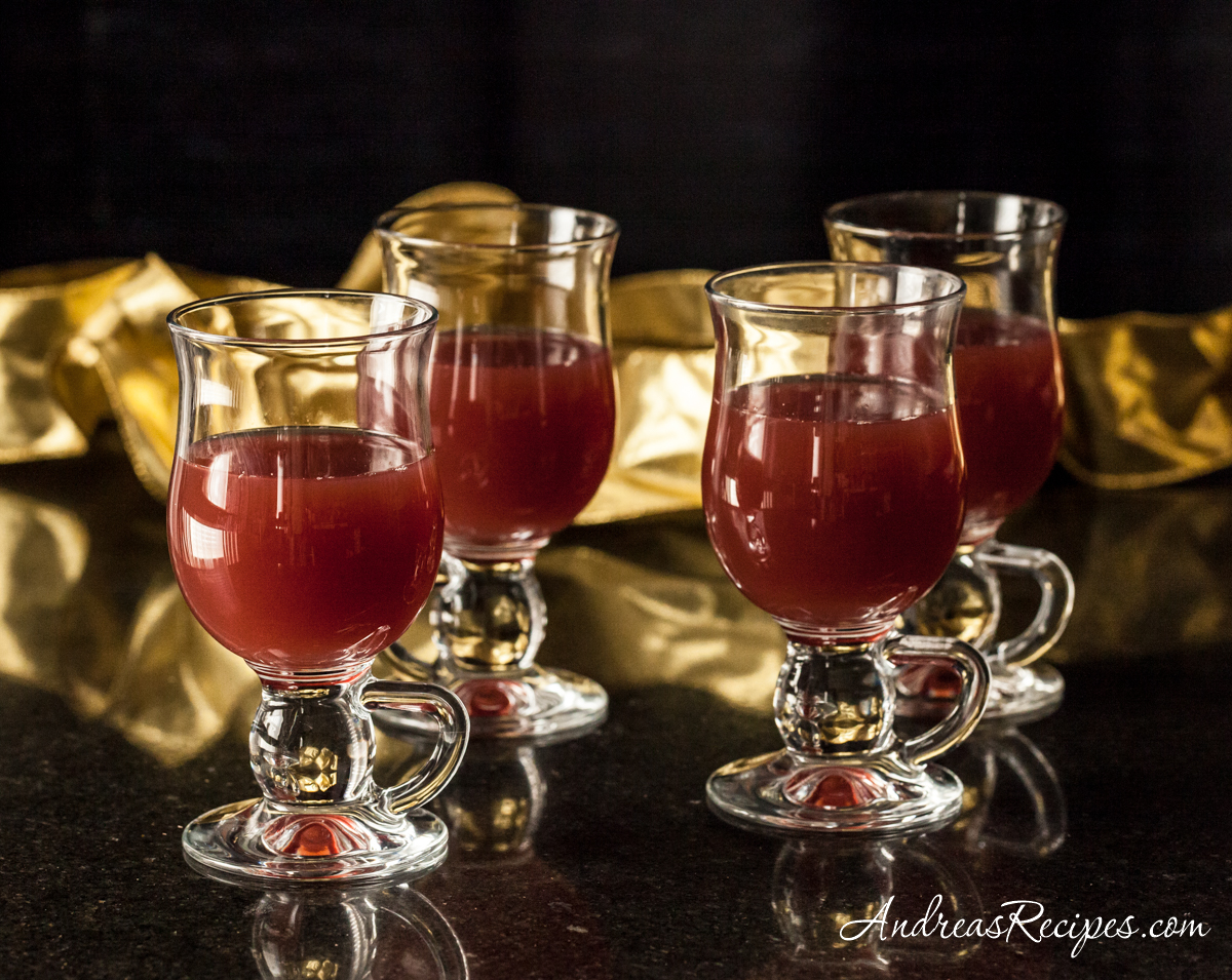Hot Apple Cranberry Cider - Andrea Meyers