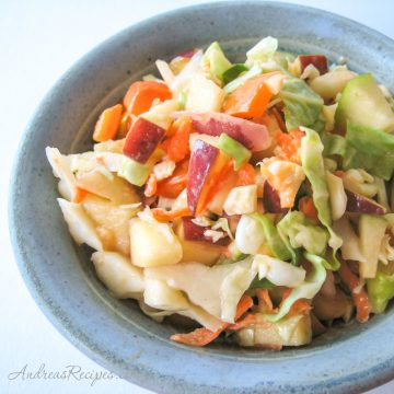 Coleslaw with Yogurt, Apple, and Peppers - Andrea Meyers