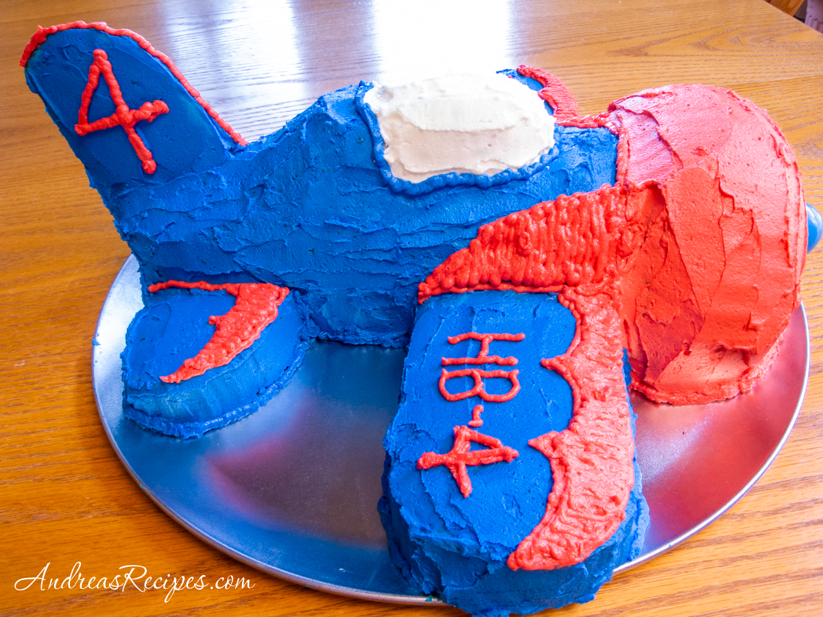 Airplane birthday cake, side view - Andrea Meyers
