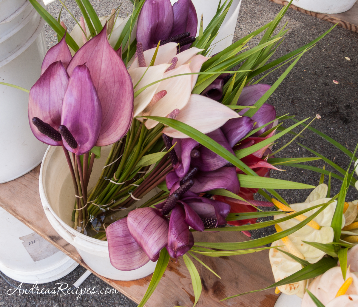 Purple anthuriums at the KCC Farmers' Market, Hawaii - Andrea Meyers