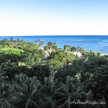 Hawaii, view from hotel - Andrea Meyers