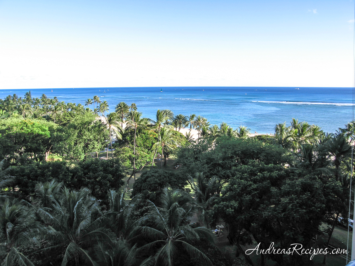 View from hotel in Hawaii - Andrea Meyers