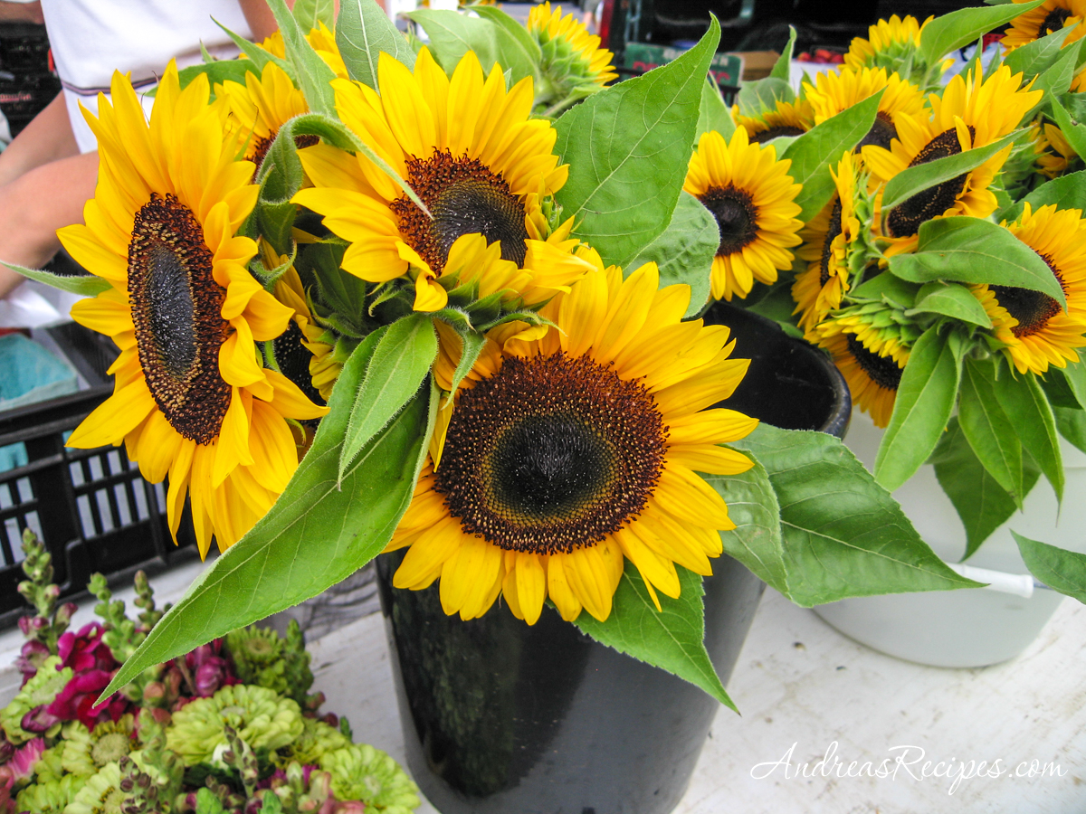 Sunflowers at the Central New York Regional Market, Syracuse - Andrea Meyers