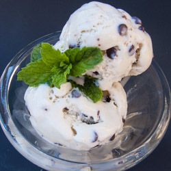 Fresh Mint Ice Cream - Andrea Meyers