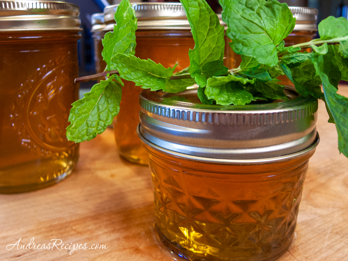 Mint Apple Jelly - Andrea Meyers