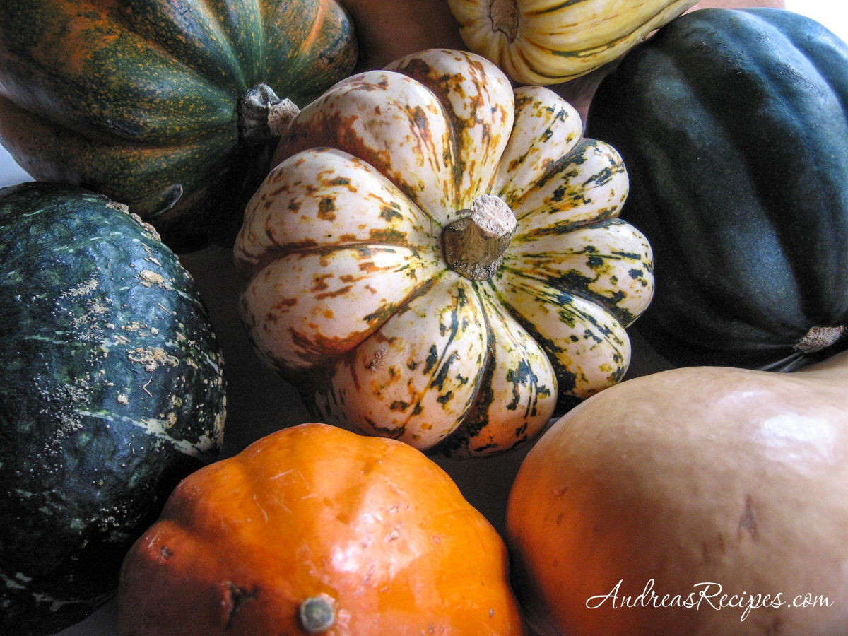 November squash - Andrea Meyers