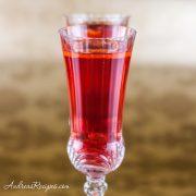 Poinsettia Cocktail - Andrea Meyers
