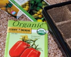 Weekend Gardening: Starting Seeds Indoors