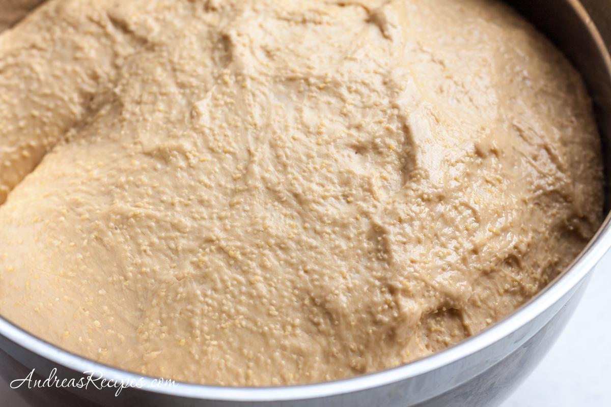 Anadama bread dough, risen - Andrea Meyers