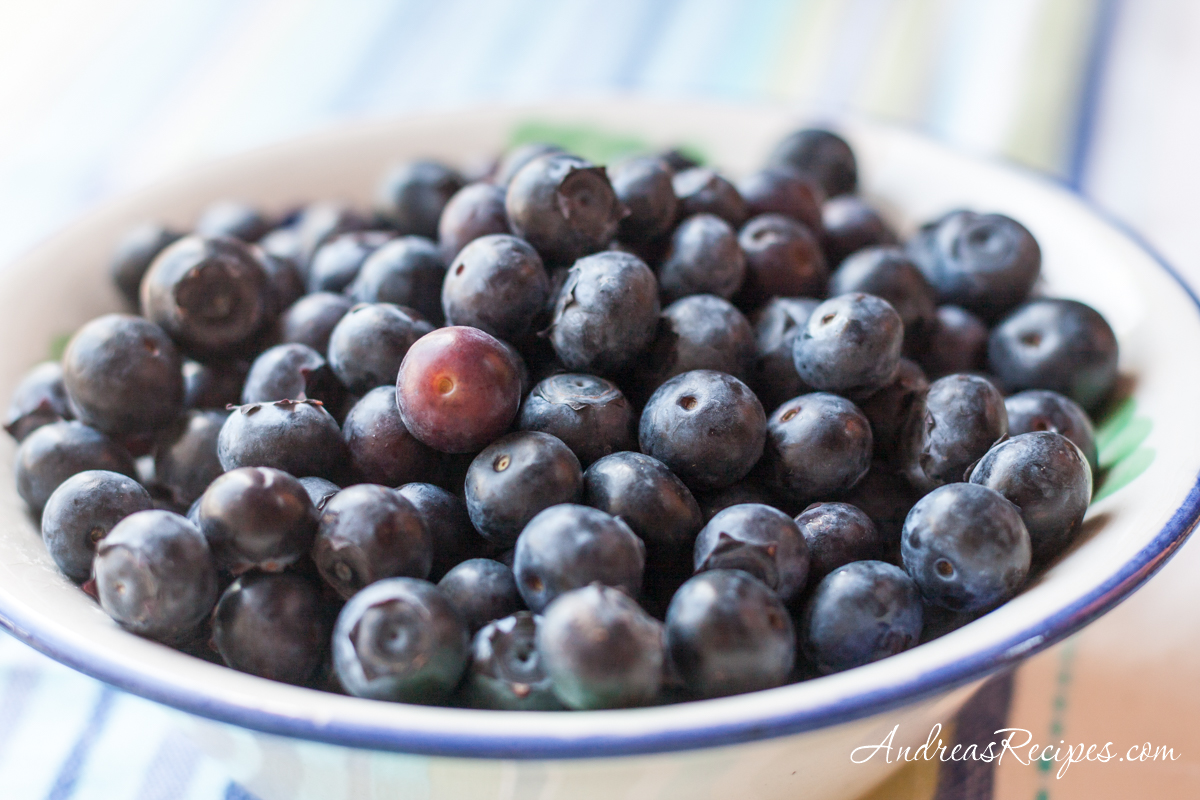 Bowl of blueberries - Andrea Meyers
