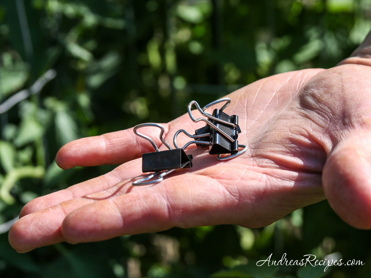 Binder clips for tomato cages - Andrea Meyers