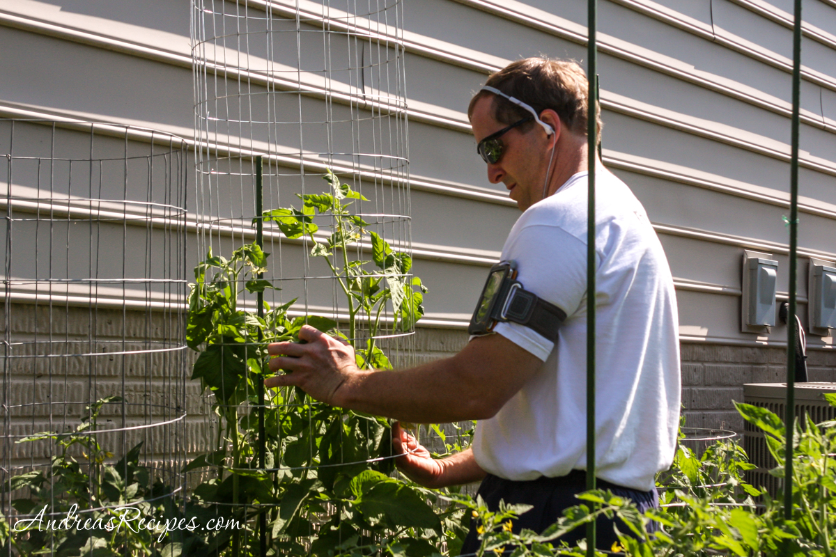 Michael working on the tomato cages - Andrea Meyers