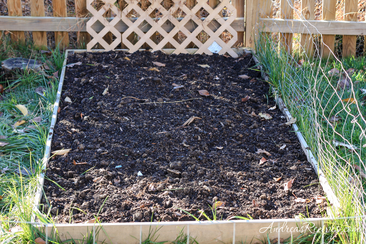 Raised bed for garlic - Andrea Meyers