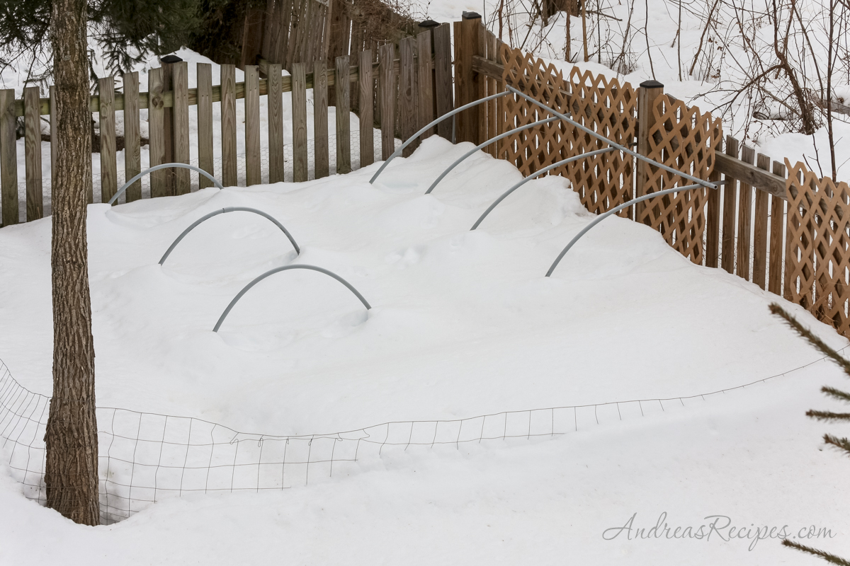 Snow melting in the garden - Andrea Meyers