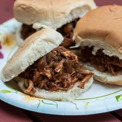 Slow Cooker Pulled Pork Recipe - Andrea Meyers